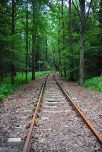 1.1372464000.railway-tracks