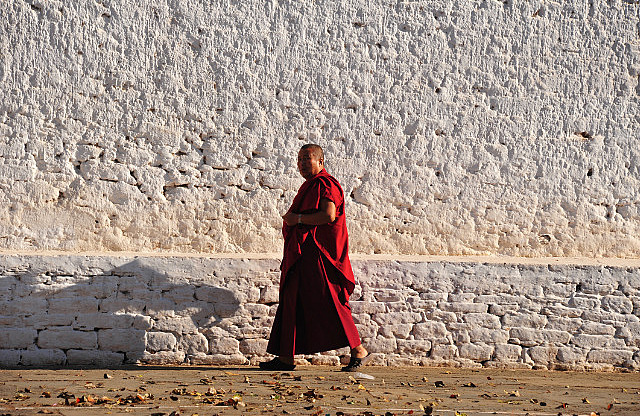 One of many monk-against-white-wall moments