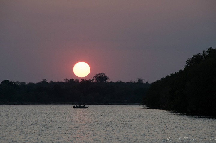 11.1437823278.classic-african-sunset-on-the-zambezi.jpg