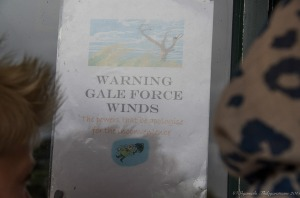 11.1439373249.gale-force-winds---hair-to-prove-it-on-left