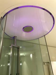 17.1493330086.purple