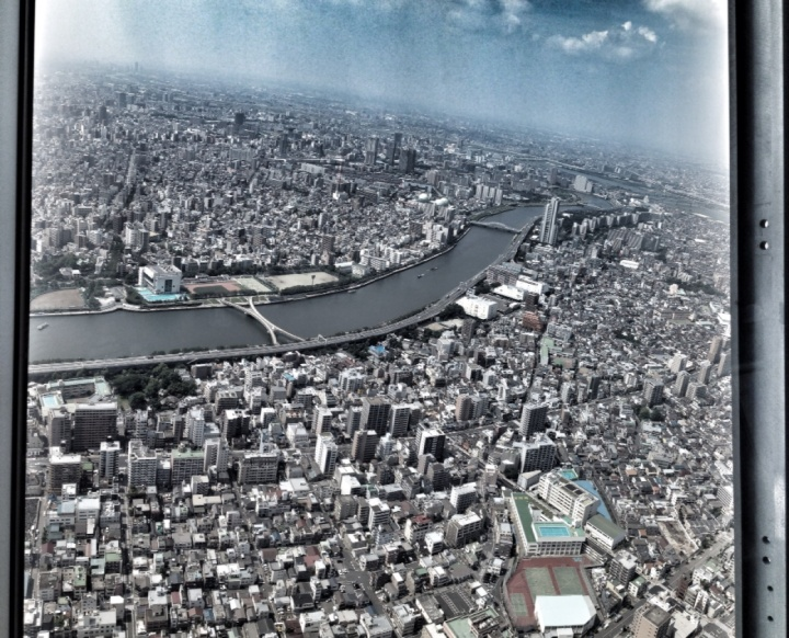 7.1406592000.tokyo-from-the-top.jpg