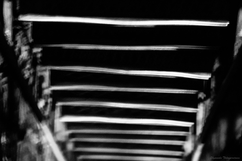 Ladder to the dungeon